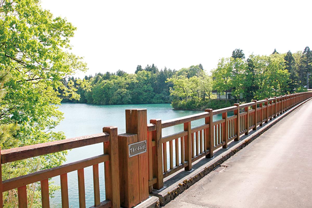 大池いこいの森ビジターセンター 池